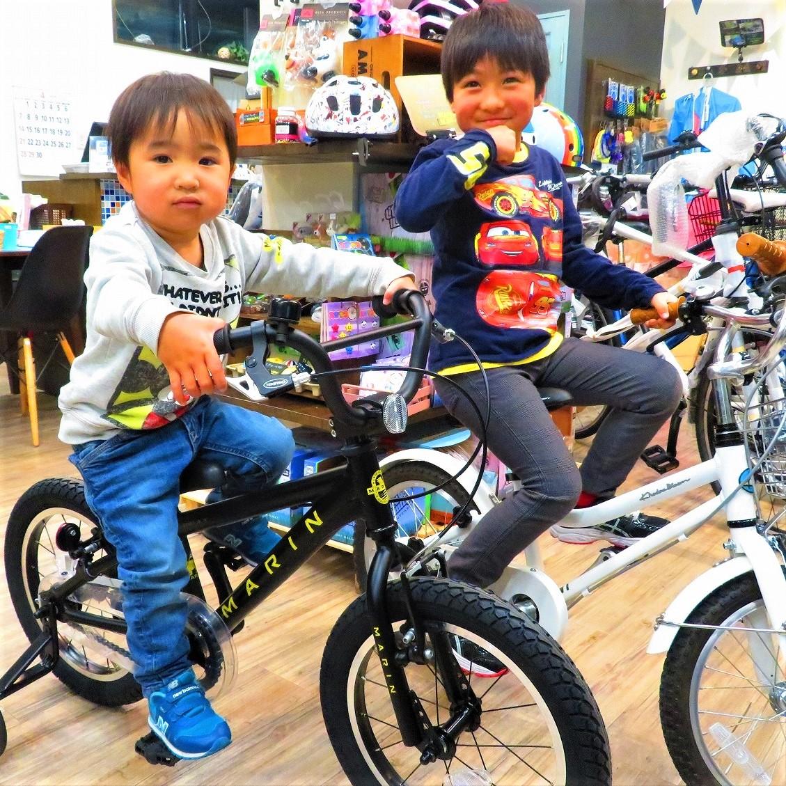 ドンキ 電動 自転車
